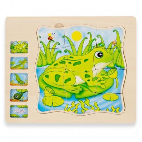 Puzzle warstwowe żaba Onshine